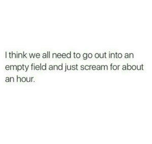 Scream, Think, and All: I think we all need to go out into an  empty field and just scream for about  an hour.