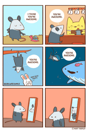 Tumblr, Blog, and Home: I THINK  YOU'RE  AWESOME.  YOU'RE  AWESOME.  YOU'RE  AWESOME  YOU'RE  AWESOME  WHO SAID  THAT?!  @CATSCAFECOMICS  ⓒ MATT TARPLEY catscafecomics:Awesome Opossum - This one hits a little close to home…