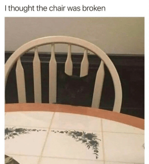 Chair, Thought, and Broken: I thought the chair was broken