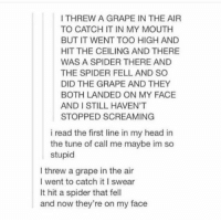 call me maybe https://t.co/DooLCkGYv5: I THREW A GRAPE IN THE AIR  TO CATCH IT IN MY MOUTH  BUT IT WENT TOO HIGH AND  HIT THE CEILING AND THERE  WAS A SPIDER THERE AND  THE SPIDER FELL AND SO  DID THE GRAPE AND THEY  BOTH LANDED ON MY FACE  AND I STILL HAVEN'T  STOPPED SCREAMING  i read the first line in my head in  the tune of call me maybe im so  stupid  I threw a grape in the air  I went to catch itI swear  It hit a spider that fell  and now they're on my face call me maybe https://t.co/DooLCkGYv5