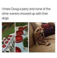 I am Doug: I threw Doug a party and none of the  other owners showed up with their  dogs. I am Doug