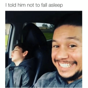 Right back to sleep 😂 Credit: @rooster_fit: I told him not to fall asleep Right back to sleep 😂 Credit: @rooster_fit