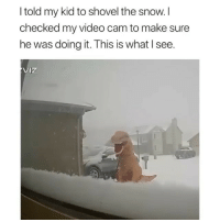 Memes, Snow, and Video: I told my kid to shovel the snow.I  checked my video cam to make sure  he was doing it. This is what I see.  Iz Gotta stay warm somehow Credit: @beemoq