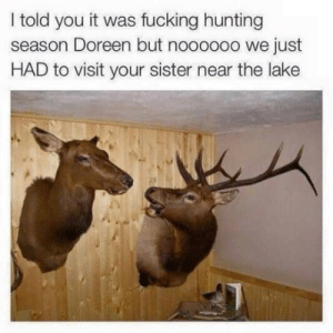 Godammit Doereen!: I told you it was fucking hunting  season Doreen but noooooo we just  HAD to visit your sister near the lake Godammit Doereen!