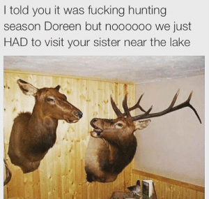 Fucking, Tumblr, and Wtf: I told you it was fucking hunting  season Doreen but noooooo we just  HAD to visit your sister near the lake shamelessfunny:WTF Doreen?