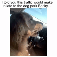Memes, Traffic, and 🤖: I told you this traffic would make  us late to the dog park Becky... Get it together Becky 😂 Credit: @_honeybunchesofoaks_