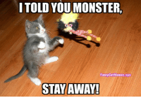 From Funny Cat Memes: I TOLD YOUMONSTER,  Funny CatMemes.xyz  STAY AWAY! From Funny Cat Memes
