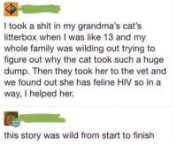 Cats, Family, and Love: I took a shit in my grandma's cat's  litterbox when I was like 13 and my  whole family was wilding out trying to  figure out why the cat took such a huge  dump. Then they took her to the vet and  we found out she has feline HIV so in a  way, I helped her.  this story was wild from start to finish I love a good story with layers.