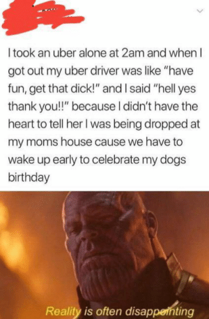 "Being Alone, Birthday, and Dogs: I took an uber alone at 2am and when I  got out my uber driver was like ""have  fun, get that dick!"" and I said ""hell yes  thank you!!"" because I didn't have the  heart to tell her I was being dropped at  my moms house cause we have to  wake up early to celebrate my dogs  birthday  Reality is often disappethting Very disappointing."