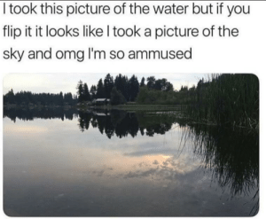 Dank, Memes, and Omg: I took this picture of the water but if you  flip it it looks like l took a picture of the  sky and omg I'm so ammused Illusion by forwardspective MORE MEMES