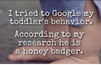 Google, Honey, I Shrunk the Kids, and Honey Badger: I tried to Google my  toddler's behavior.  According to my  research he is  a honey badger.