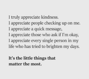 Life, Appreciate, and Okay: I truly appreciate kindness.  I appreciate people checking up on me.  I appreciate a quick message,  I appreciate those who ask if I'm okay,  I appreciate every single person in my  life who has tried to brighten my days.  It's the little things that  matter the most.