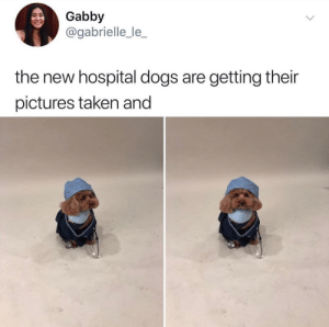 I trust this dogtor with my lifevia: gabrielle_le_: I trust this dogtor with my lifevia: gabrielle_le_