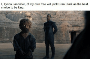 https://t.co/R9rYoeyzhE: I, Tyrion Lannister, of my own free will, pick Bran Stark as the best  choice to be king https://t.co/R9rYoeyzhE
