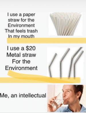 Meirl: I use a paper  straw for the  Environment  That feels trash  In my mouth  I use a $20  Metal straw  For the  Environment  Me, an intellectual Meirl