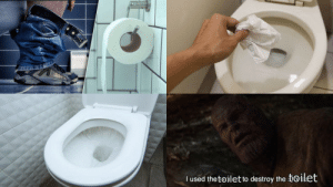 True, Used, and Toilet: I used the toilet to destroy the toilet True