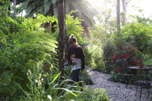 I used to live where the 90's animated movie Fern Gully was based. It was a favourite of mine as a child and somehow life brought me there. Here is a picture of my lovely mother enjoying the winter garden. Fernvale, Australia.: I used to live where the 90's animated movie Fern Gully was based. It was a favourite of mine as a child and somehow life brought me there. Here is a picture of my lovely mother enjoying the winter garden. Fernvale, Australia.