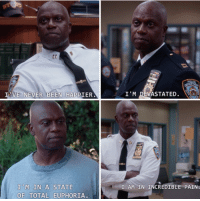 Brooklyn, Never, and Pain: I VE NEVER BEEN HAPPIER  M IN A STATE  OF TOTAL EUPHORIA.  I'M DEVASTATED.  I AM IN INCREDIBLE PAIN Brooklyn Nine-Nine