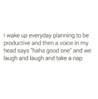 "Funny, Head, and Love: I wake up everyday planning to be  productive and then a voice in my  head says ""haha good one"" and we  laugh and laugh and take a nap @themrsqueenbee and I love when a plan comes together🙌🏻😴 Rp from fave bee @themrsqueenbee @themrsqueenbee @themrsqueenbee"