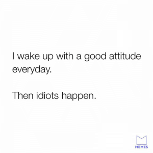 Dank, Memes, and Good: I wake up with a good attitude  everyday.  Then idiots happen.  MEMES Unfortunately the truth.