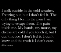 Weather, Cold, and Pain: I walk outside in the cold weather  Freezing out, but I don't feel it. The  only thing I feel, is the pain I am  trying to escape from. The pair  inside me. My hands, my nouse, my  cheeks are cold if you touch it, but I  don't notice. I don't feel it. I don't  know and the truth is I don't care.  -bllackwater