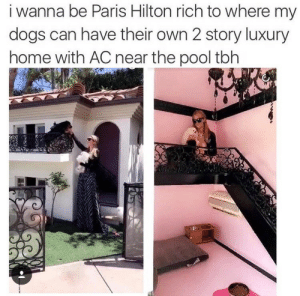 Memes: i wanna be Paris Hilton rich to where my  dogs can have their own 2 story luxury  home with AC near the pool tbh Memes