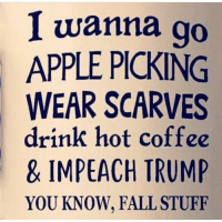 hotness: I wanna go  APPLE PICKING  WEAR SCARVES  drink hot coffee  & IMPEACH TRUMP  YOU KNOW, FALL STUFF