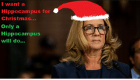 I Want A Hippocampus For Christmas.Hippocampus And Hippocampus Meme On Me Me
