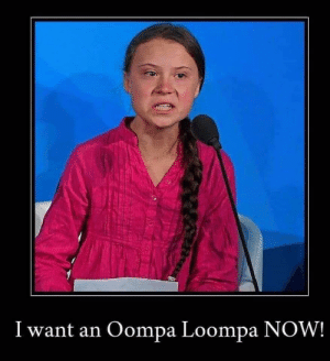 Terrible Facebook, Baby, and Oompa Loompa: I want an Oompa Loompa NOW! Created and Shared by a Baby Boomer