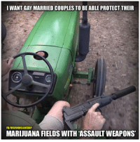 Memes, 🤖, and Weapons: I WANT GAY MARRIED COUPLES TO BE ABLE PROTECT THEIR  FBIVISFORVOLUNTARY  MARIJUANA FIELDS WITH ASSAULT WEAPONS