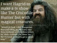 """Memes, Hungarian, and 🤖: I want Hagrid to  like The Crocodile  magical creatures.  make a tv show  Hunter but with  HouseofGeekiness.com  Would ya look 't that Hungarian  Horntail? Now, the Min'stry says  these beauties are mindless killers  bu' that's rubbish. Oh, bless 'im.  He's breatin firel Let's get a closer  look."""""""
