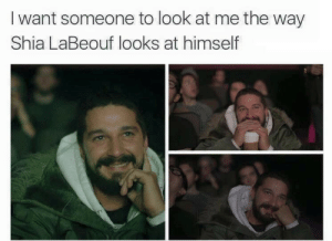 Shia LaBeouf, Shia, and Look: I want someone to look at me the way  Shia LaBeouf looks at himself