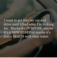 Cars, Driving, and Memes: I want to get into my car and  drive until I find what I'm looking  for. Maybe it's PURPOSE, maybe  it's a NEW START or maybe it's  just a BEACH with clear water.