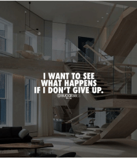 You can change your entire life by 10 fold by working hard and never giving up. Try this for the whole next year you will surprise yourself.- - Life Change Billionaire -: I WANT TO SEE  WHAT HAPPENS  IF I DON'T GIVE UP.  @SUCCESSES You can change your entire life by 10 fold by working hard and never giving up. Try this for the whole next year you will surprise yourself.- - Life Change Billionaire -