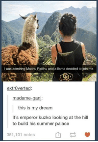 machu picchu: I was admiring Machu Picchu and a llama decided to join me.  extrOverted:  madame-ganj:  this is my dream  It's emperor kuzko looking at the hill  to build his summer palace  351,101 notes  山一