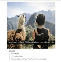 Amazing and a e s t h e t I c... Follow me ( @god.of.appleysauce )for more funny tumblr and textpost: I was admiring Machu Picchu and a llama decided to join me.  extrOverted  madame-gan  this is my dream  It's emperor kuzko looking at the hill to build his summer palace Amazing and a e s t h e t I c... Follow me ( @god.of.appleysauce )for more funny tumblr and textpost