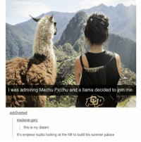 where is one place you need to travel to?: I was admiring Machu Picchu and a llama decided to join me.  extrOvertesd  this is my dream  It's emperor kuzko looking at the hill to build his summer palace where is one place you need to travel to?