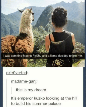 All hail Emperor Kuzko: I was admiring Machu Picchu and a llama decided to join me.  extrOverted  madame-ganj:  this is my dream  It's emperor kuzko looking at the hill  to build his summer palace All hail Emperor Kuzko