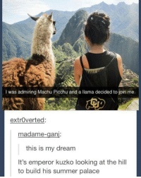 machu picchu: I was admiring Machu Picchu and a llama decided to join me.  extroverted:  madame  an  this is my dream  It's emperor kuzko looking at the hill  to build his summer palace