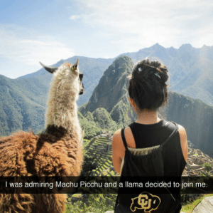 extr0verted:  madame-ganj:  this is my dream  It's emperor kuzko looking at the hill to build his summer palace : I was admiring Machu Picchu and a llama decided to join me. extr0verted:  madame-ganj:  this is my dream  It's emperor kuzko looking at the hill to build his summer palace
