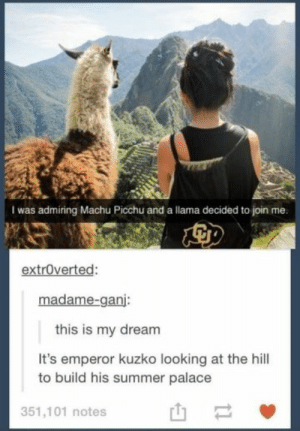 31 Tumblr Posts Only True Disney Fans Will Appreciate: I was admiring Machu Picchu and a llama decided to join me.  extroverted:  madame-ganj:  this is my dream  It's emperor kuzko looking at the hill  to build his summer palace  351,101 notes  t1 31 Tumblr Posts Only True Disney Fans Will Appreciate
