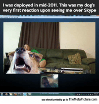 laughoutloud-club:  Dog Sees His Owner For The First Time After His Deployment: I was deployed in mid-2011. This was my dog's  very first reaction upon seeing me over Skype  you should probably go to TheMetaPicture.com laughoutloud-club:  Dog Sees His Owner For The First Time After His Deployment
