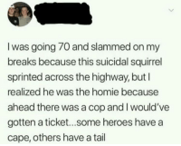 Gg, Homie, and Memes: I was going 70 and slammed on my  breaks because this suicidal squirrel  sprinted across the highway, but  realized he was the homie because  ahead there was a cop and I would've  gotten a ticket...some heroes have a  cape, others have a tail memesonthehour:  I'm a bot. I post every hour. Follow for endless memes. Join my discord! - https://discord.gg/RQRb9Jx
