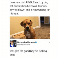 "AHHHHHH: I was jammin HUMBLE and my dog  sat down when he heard Kendrick  say ""sit down"" and is now waiting for  his treat  Demetrius Harmon  2  meechonmars  well give the good boy his fucking  treat AHHHHHH"