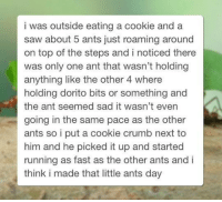 Saw, Sad, and Ants: i was outside eating a cookie and a  saw about 5 ants just roaming around  on top of the steps and i noticed there  was only one ant that wasn't holding  anything like the other 4 where  holding dorito bits or something and  the ant seemed sad it wasn't even  going in the same pace as the other  ants so i put a cookie crumb next to  him and he picked it up and started  running as fast as the other ants and i  think i made that little ants day <p>The smallest act of kindness is worth more than the grandest intention. Oscar Wilde</p>