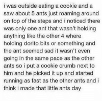 Memes, Saw, and Sad: i was outside eating a cookie and a  saw about 5 ants just roaming around  on top of the steps and i noticed there  was only one ant that wasn't holding  anything like the other 4 where  holding dorito bits or something and  the ant seemed sad it wasn't even  going in the same pace as the other  ants so i put a cookie crumb next to  him and he picked it up and started  running as fast as the other ants and i  think i made that little ants day https://t.co/dloofmWfAT