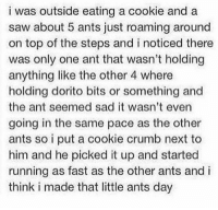 Funny, Saw, and Sad: i was outside eating a cookie and a  saw about 5 ants just roaming around  on top of the steps and i noticed there  was only one ant that wasn't holding  anything like the other 4 where  holding dorito bits or something and  the ant seemed sad it wasn't even  going in the same pace as the other  ants so i put a cookie crumb next to  him and he picked it up and started  running as fast as the other ants and i  think i made that little ants day Many blessing to you sir.