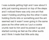 I'm the fucking ant whisper: I was outside getting high and I saw about 5  ants just roaming around on top of the steps  and I noticed there was only one ant that  wasn't holding anything like the other 4 were  holding Dorito bits or something and the ant  seemed sad it wasn't even going in the same  pace as the other ants so I put a cookie  crumb next to him and he picked it up and  started running as fast as the other aunts  and I think I made that little ants day I'm the fucking ant whisper