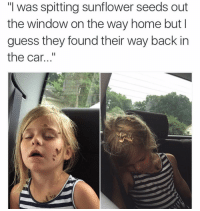 "Omg. (@bustle): ""I was spitting sunflower seeds out  the window on the way home but I  guess they found their way back in  the car Omg. (@bustle)"