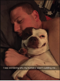 Husband, Why, and Look: I was wondering why my husband wasn't cuddling me... That priceless look 3